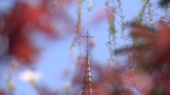 Church spire, St. Mary's Church, Midleton.